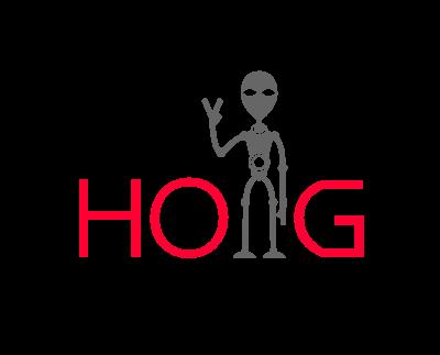 HOlogo设计