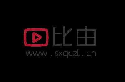比由logo设计