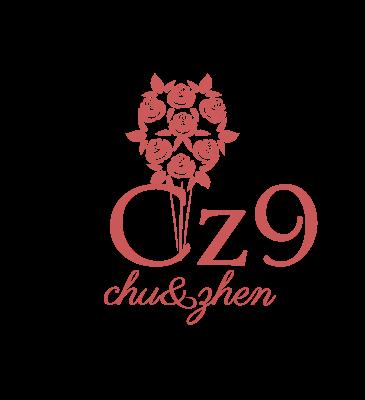 Cz9logo设计