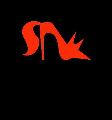 望狐logo设计